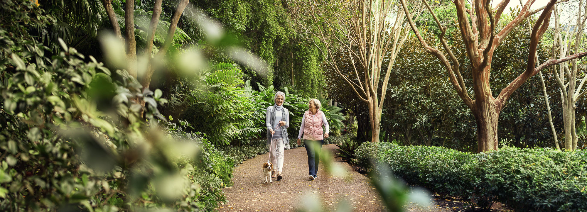 Two women walking a dog during a photography campaign for a retirement company